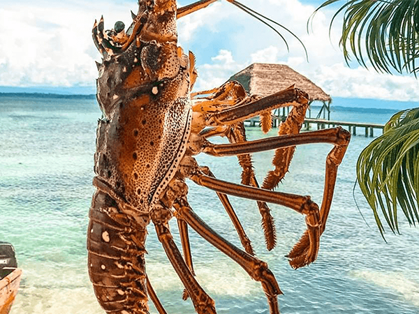 Belize_Kreeft_LustrumreisGuatemala