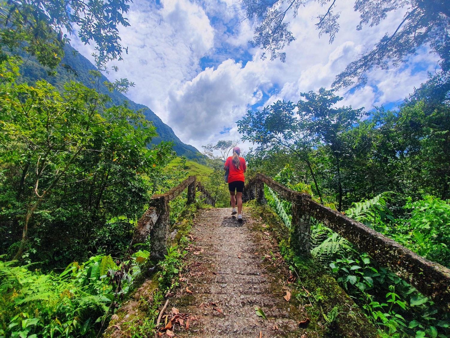Colombia Cocorna Santo Domingo Hike Brug