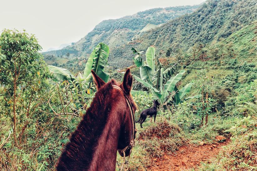 Colombia-Jardin-Paardrijden-Chorro-Blanco1