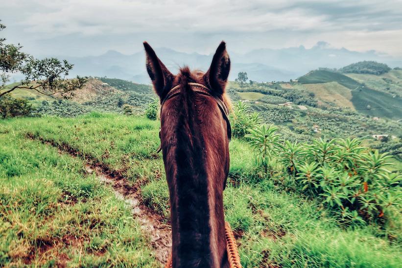 Colombia-Jardin-Paardrijden-Chorro-Blanco4