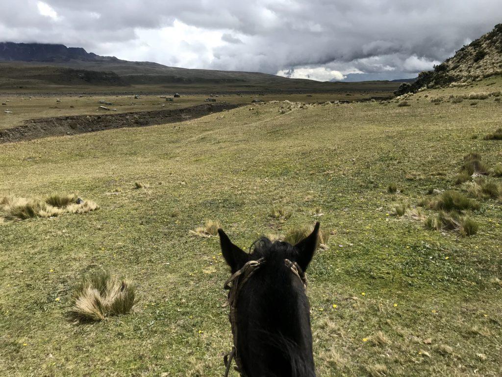 Ecuador Cotopaxi National Park Secret Garden Paardrijden 2