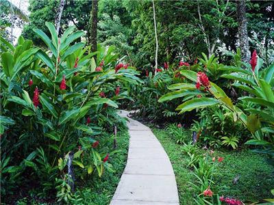 Hotel Aldea Palenque Mexico5