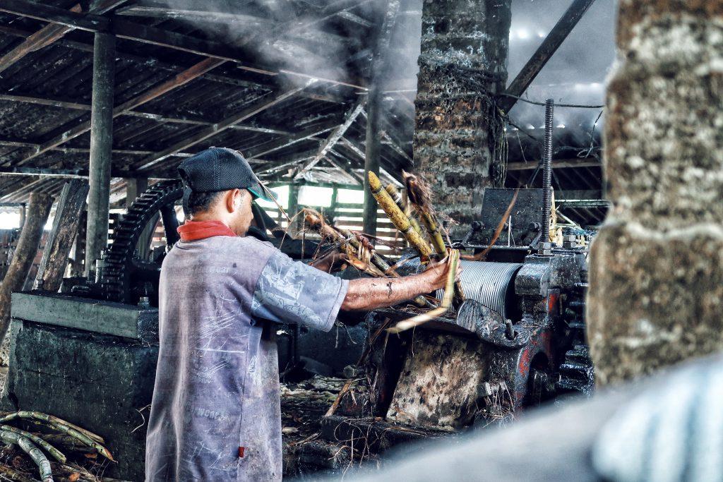 Lustrumreis Colombia Panela Fabriek Anne 123