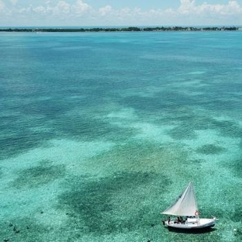 Lustrumreizen Belize