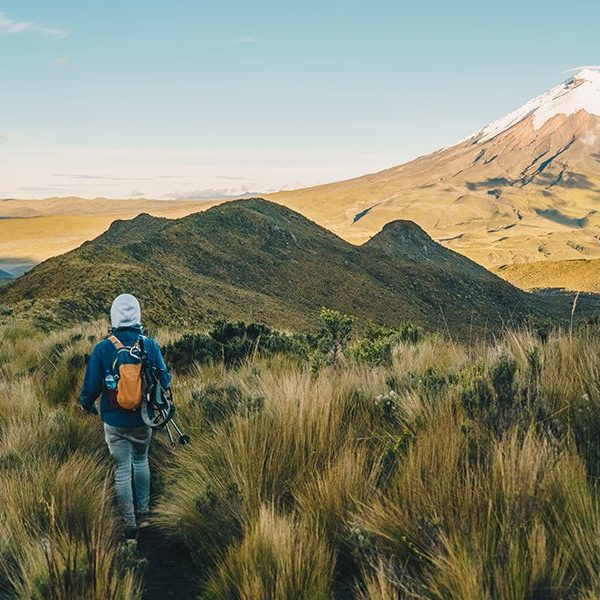Lustrumreizen naar Ecuador. Bezoek de Cotopaxi vulkaan.