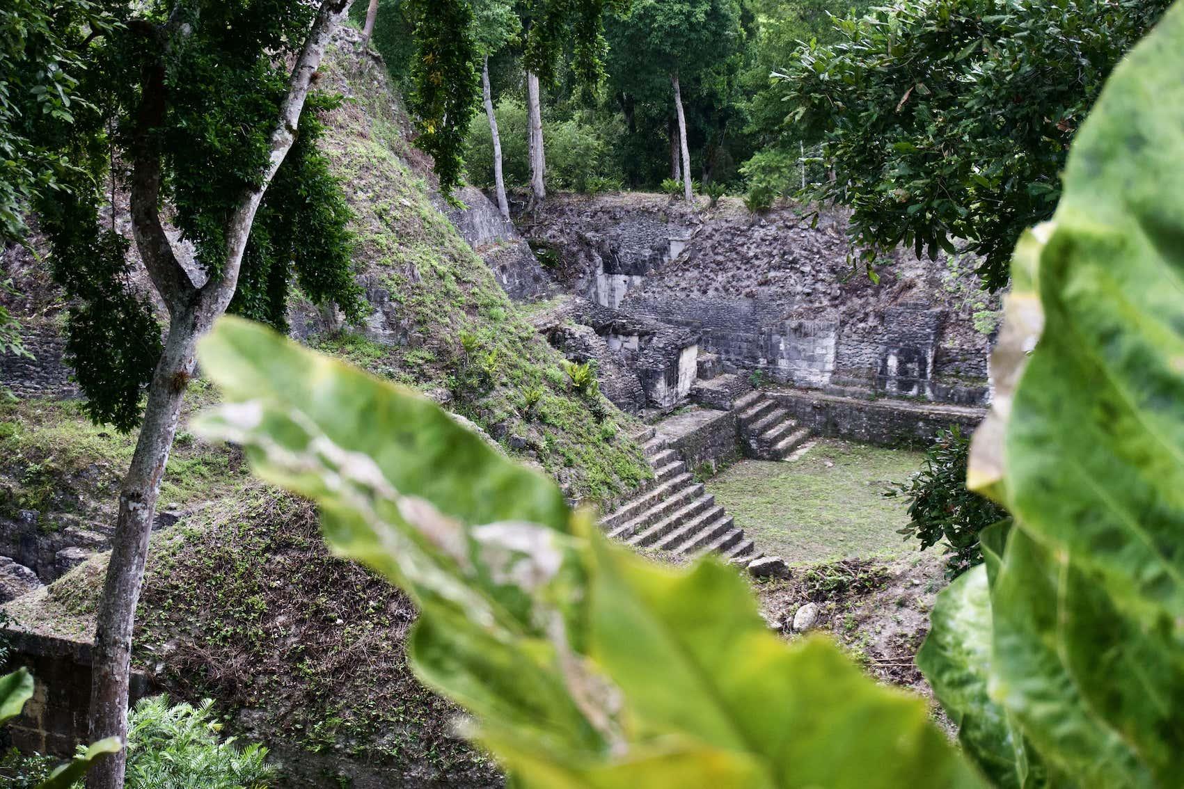 Lustrumreis Guatemala 4x4 Peten Artsy Blaadje