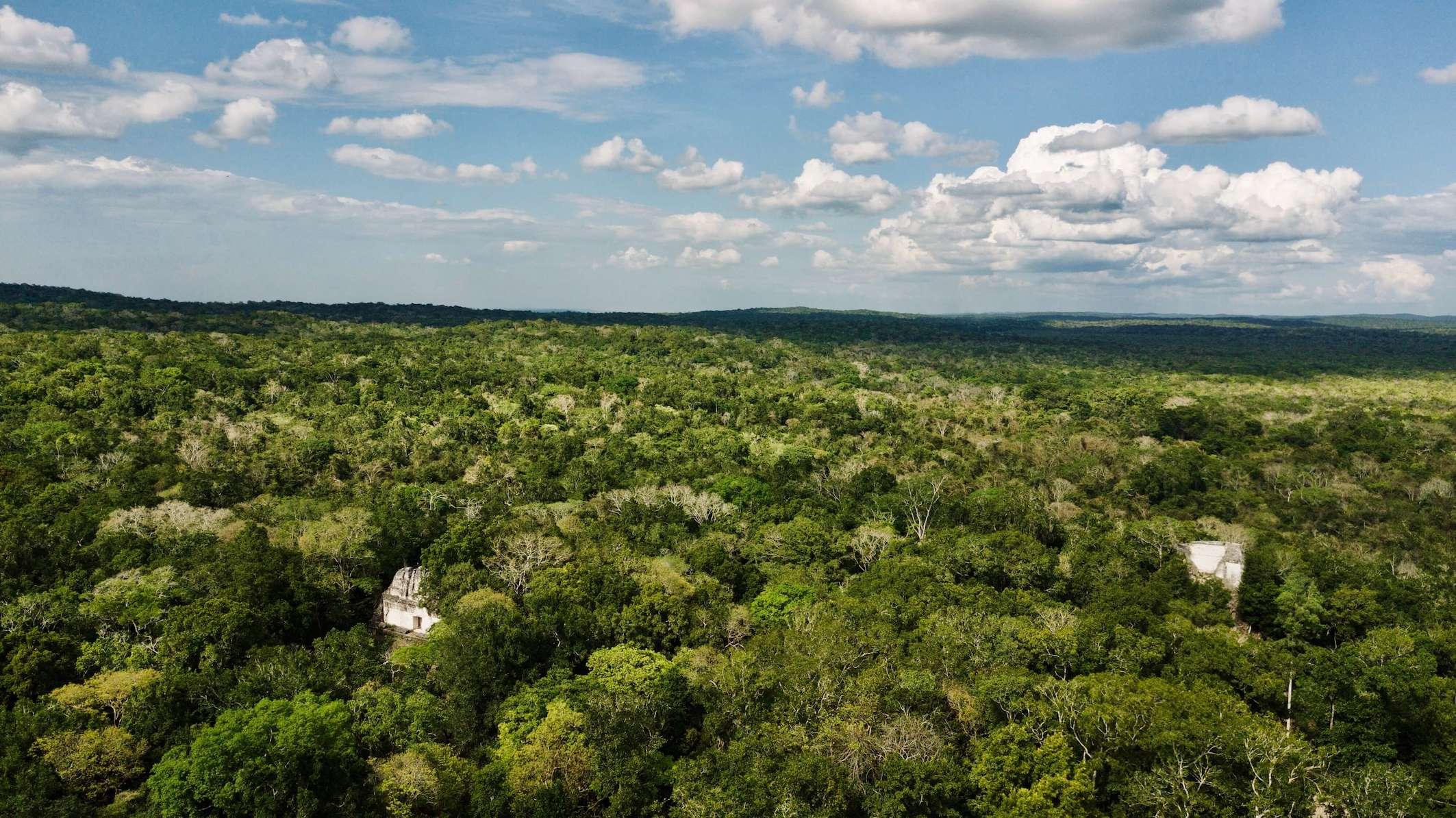 Lustrumreis Guatemala 4x4 Peten Drone Jungle
