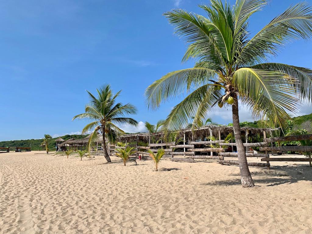 Lustrumreis Mexico Puerto Escondido Playa Bacocho
