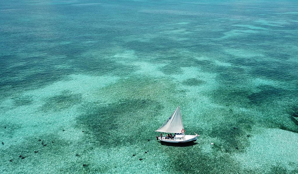 Lustrumreis Belize