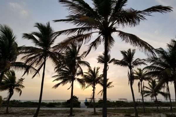 Lustrumreis Cuba Centraal-Amerika 123