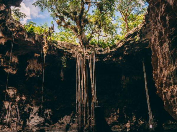 Lustrumreis - Mexico - Cenote merida