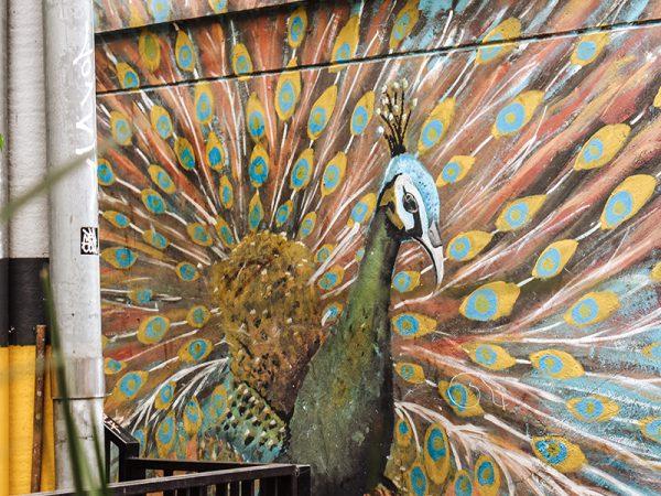Medellin-Streetart-Comuna13-Lustrumreis