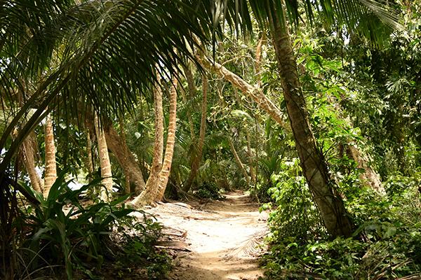 Tortuguero-Lustrumreis-Costa-Rica